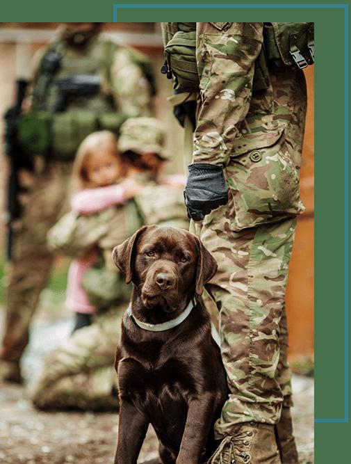 dog-soldier